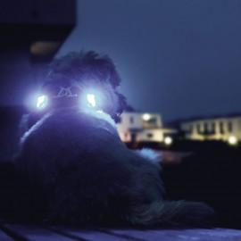 Curli Luumi LED - luz de...