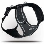 BELKA – el nuevo arnés de Curli – para perros grandes