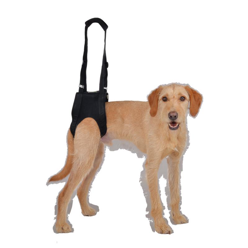 Arnés de ayuda para perro Vetlando