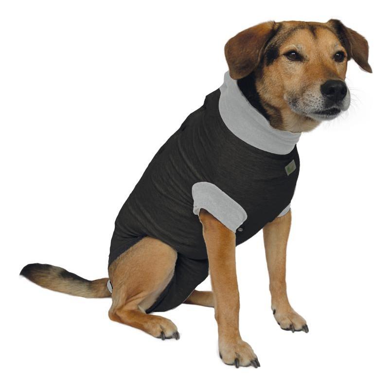 body post operatorio perro