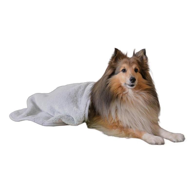 Manta post operatorio perro