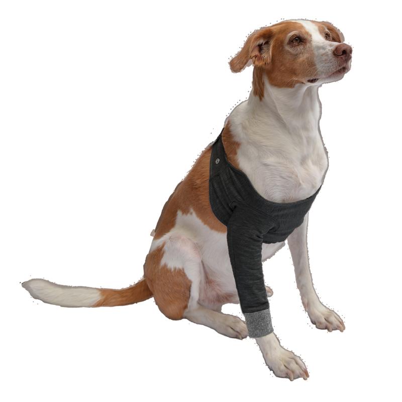 protector ortopédico para patas delanteras de perro